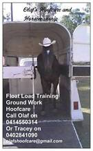 Olafs Hoofcare & Horsemanship Greenbank Logan Area Preview