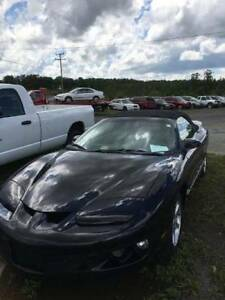 1999 Pontiac Firebird Convertible Located in West Kelowna BC CAN