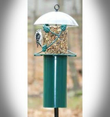 Birds Choice Pole Mounted Seed Cylinder Bird Feeder With Squirrel Baffle SCFPOLE for sale  Hyde Park