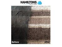 Professional Carpet/Rug/Upholstery cleaning