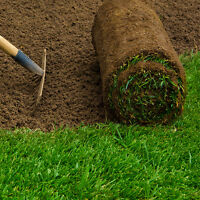 Lawn care / SOD installation rototilling / Eavestrough cleaning