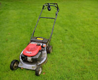 Lawn care and yard work service on the Norhside area