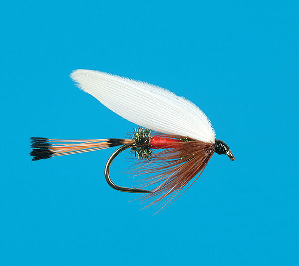 Wet flies buying guide ebay for Wet fly fishing