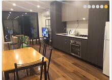$285/ wk beautiful ensuite - All Bills included North Melbourne Melbourne City Preview