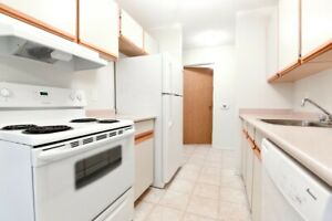 Large Two Bedrooms - Lakeview - Pet Friendly - $225 OFF/MONTH!*