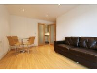 TWO bedroom flat in ST DAVIDS SQUARE, E14 3WQ, balcony, gym, pool, secure parking, porter, furnish