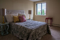 Bank St & Hunt Club Rd - Bachelor Suites Available Now!