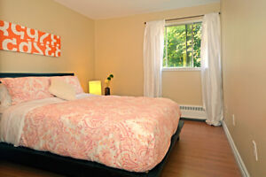 Lovely Quinpool Area 2 bed! Walk to Dal, Oval, and Downtown!
