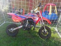 Lem 50cc kids motorbike