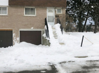 Need your walkways/driveway cleared