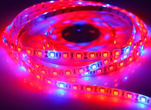 LED Gro-light 5 meter light strip