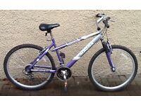 "Bike/Bicycle. LADIES MAGNA "" ENVY "" MOUNTAIN BIKE"