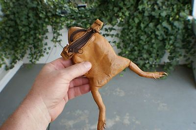 5 Real Frog/Toad purses w/sling. Wholesale. leather coin bags gag Unique gift..