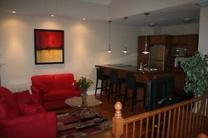 Furnished Suites - Executive/Short or Long Term Accommodations London Ontario image 8