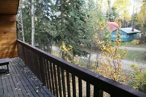 Lake Cabin for rent at Seba Beach, Wabamun near Edmonton Alberta Canada image 8