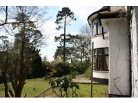 Large single self contained room in a lovely house , private road . Blackwater / Camberley