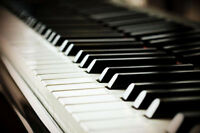 Piano and theory lessons for all ages!