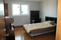Rooms for rent on Browns Line/Lakeshore available immediately