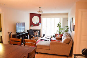 Oliver Room for Rent - Near Macewan, NAIT, Brewery District