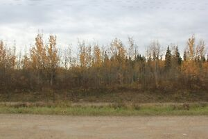 Just over 10 Acres of  Land at KIV/MLB to start lake living!