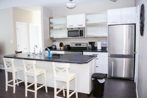 Gorgeous Furnished Condo for Rent, on College Ave!!