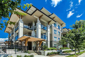 Brand New Spacious Condo/Townhouse Available, Central Location