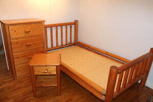 Twin Log Bedroom Set