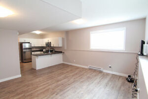 Spacious, Bright 2 Bedroom Bsmt Suite with Attached Garage!