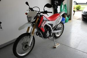 CRF250L for sale