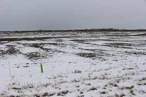 30 Acres on Springfield Rd 24E
