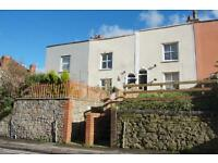 3 bedroom house in Cotham Brow, Cotham, Bristol, BS6 6AE