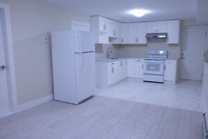 Newly Renovated 2 Bed 1 Bath Lougheed area