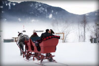 Winter Sleigh Ride Business