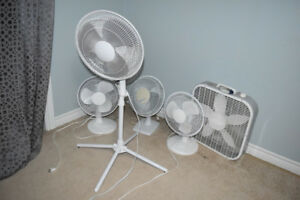 electric fans GET THEM CHEAP BEFORE YOU NEED THEM IN THE SUMMER!