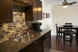 Beautifully renovated One Bedroom