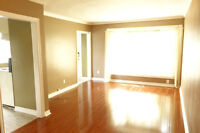 3 Bedroom For Rent - Aug 1st