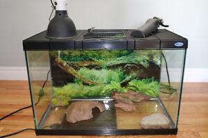 Medium Reptile Terrarium & Accessories