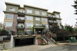 OPEN HOUSE OCT 21 1-3pm TOP FLOOR LUXURY UNIT WITH RIVER  VIEWS