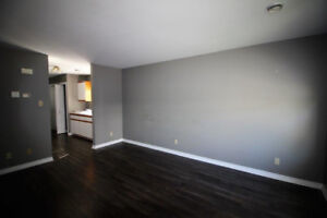 Ground level apartment for rent for 55+ person