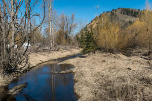 1788 Vernon Street, Lumby - 6.87 Acres of Flat Land