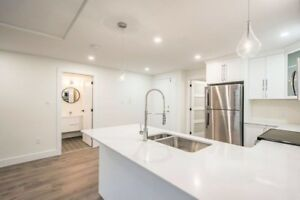 Newly renovated condo across from kings college