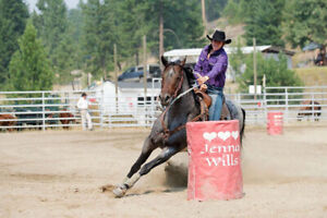 9 year old barrel, pole, rope mare