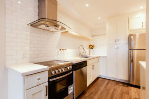 10 x 10 shaker white cabinets