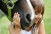 Summer Horse Riding Camps!!