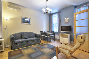 Charming Apartment near McGill University (12 Month Lease)