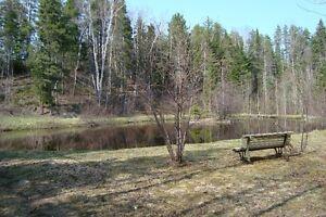 Maison à vendre (domaine) Lac-Saint-Jean Saguenay-Lac-Saint-Jean image 5