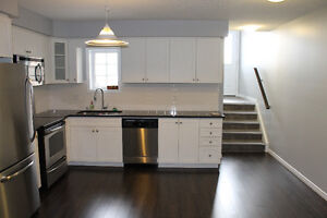 ATTENTION INVESTORS - IMPECCABLE 1 BEDROOM IN UNIVERSITY VILLAGE Kitchener / Waterloo Kitchener Area image 8