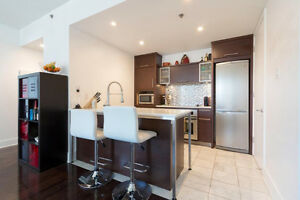 Amazing 1 bed condo in Old Montreal