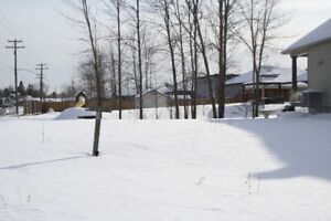 LOTS FOR SALE IN LONG SAULT