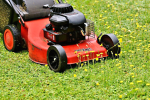 Dependable 30$ Lawn cutting and edging